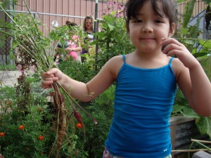 One of the students at the Garden class picking carrots