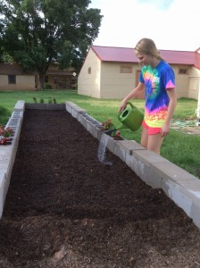 One of my projects through the summer internship involves the watering and planting of our community Food Bank garden.