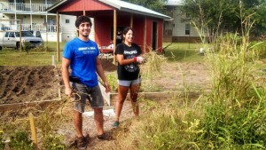 This is a photo from my undergraduate days gardening with the Student Nutrition Organization at Dunbar Community Garden in San Marcos, Texas. This particularly weedy plot was maintained by all the gardeners to provide produce for the Hays County Food Bank.