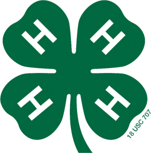 media_graphics_offical_clover_markouterclover_color