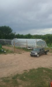 Finishing up the first hoop house with Dario and herbs