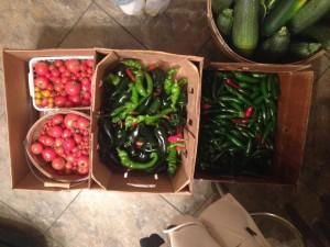 Local grown produce