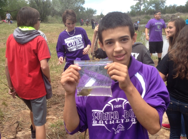 A Santa Rosa middle school student proudly shows off a baby softshell turtle that he found at the Pecos River site