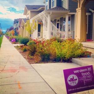 Yard Signs In Neighborhood