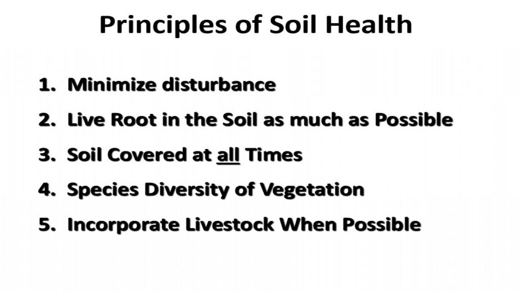 Principles of Soil Health