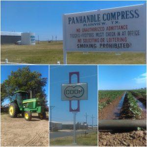 Plainview Agriculture