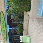 Gellery shop