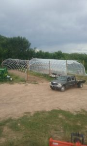The two hoop houses.