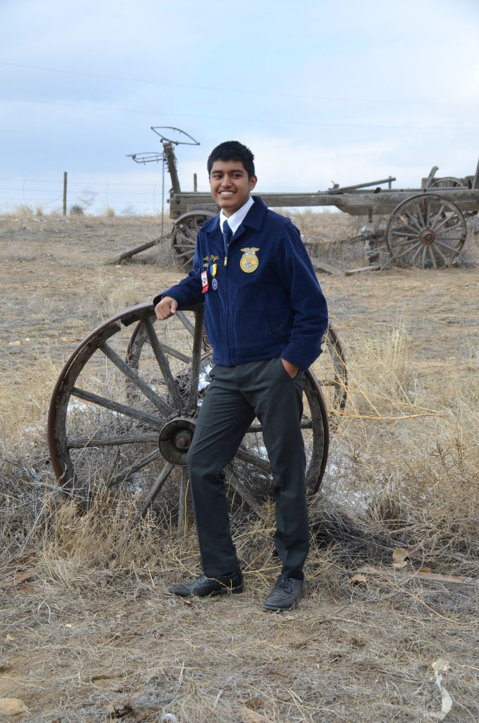 I love the FFA organization. I am very involved with our chapter and plan to become a state officer. I was previously reporter for our chapter and will be secretary this following year.